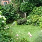 Perrymead_Street_Garden